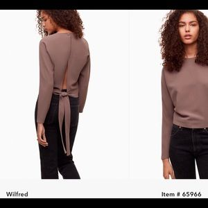 Aritzia Wilfred Laon Blouse in Colour Caban